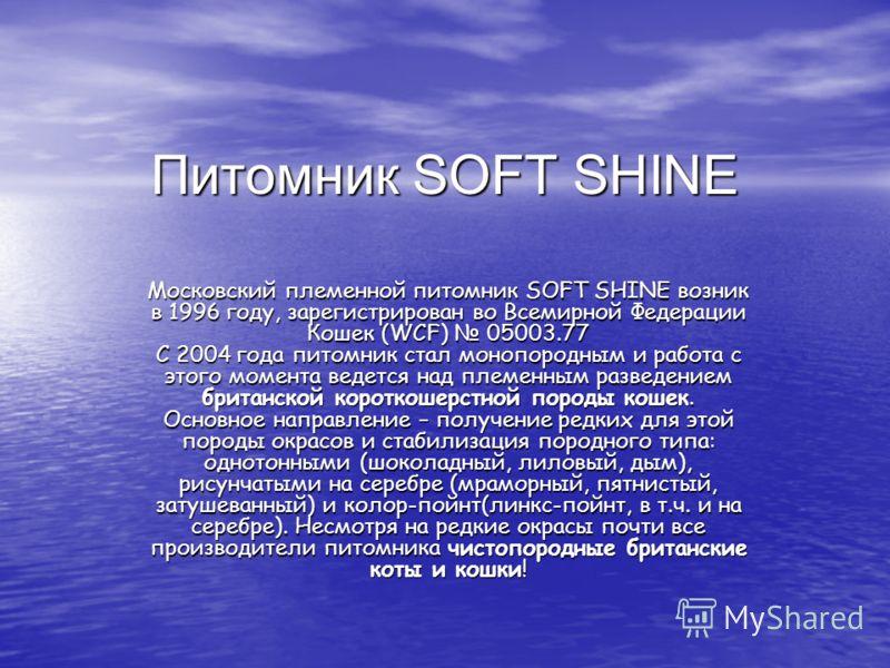 Питомник SOFT SHINE Московский племенной питомник SOFT SHINE возник в 1996 году, зарегистрирован во Всемирной Федерации Кошек (WCF) 05003.77 С 2004 года питомник стал монопородным и работа с этого момента ведется над племенным разведением британской