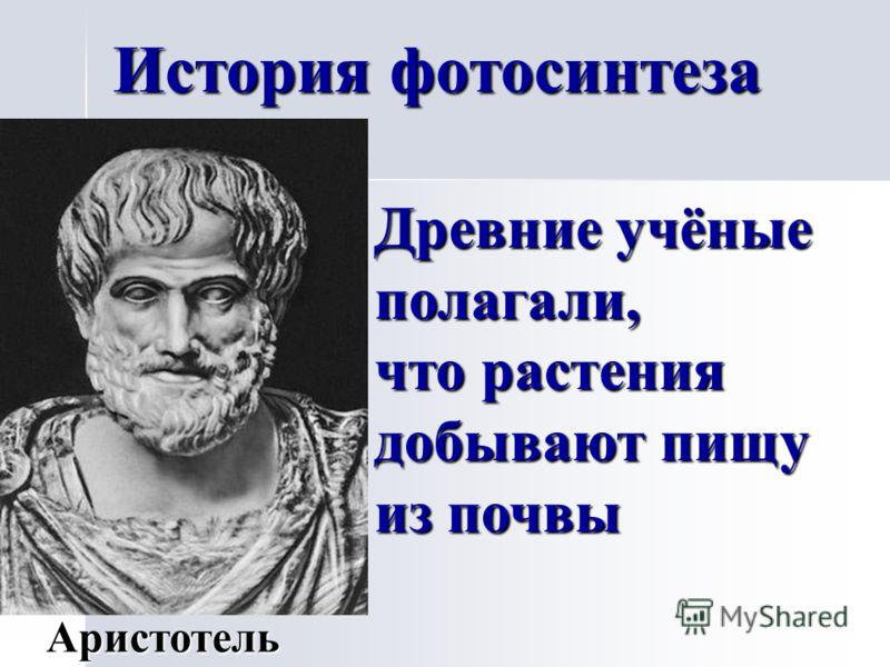 История фотосинтеза Древние учёные полагали, что растения добывают пищу из почвы Аристотель