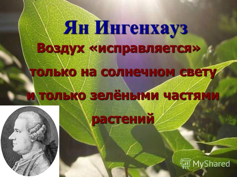 Ян Ингенхауз Воздух «исправляется» только на солнечном свету и только зелёными частями растений