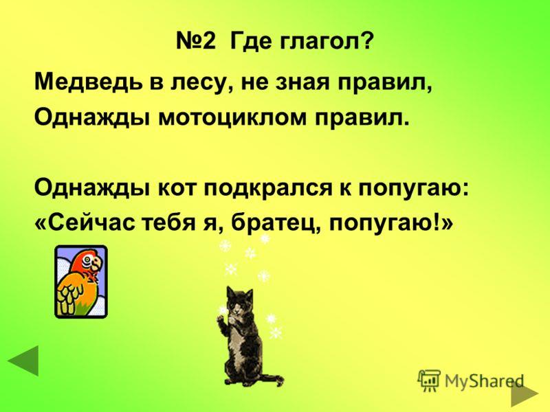 2 Где глагол? Медведь в лесу, не зная правил, Однажды мотоциклом правил. Однажды кот подкрался к попугаю: «Сейчас тебя я, братец, попугаю!»