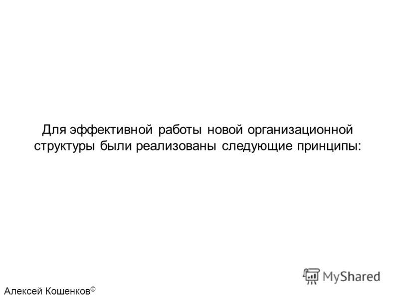 Для эффективной работы новой организационной структуры были реализованы следующие принципы: Алексей Кошенков ©
