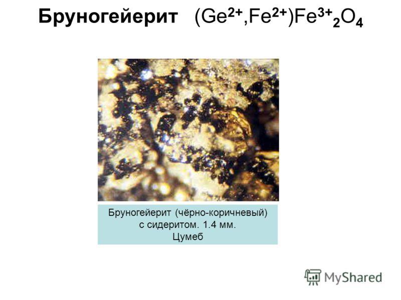 Бруногейерит (Ge 2+,Fe 2+ )Fe 3+ 2 O 4 Бруногейерит (чёрно-коричневый) с сидеритом. 1.4 мм. Цумеб