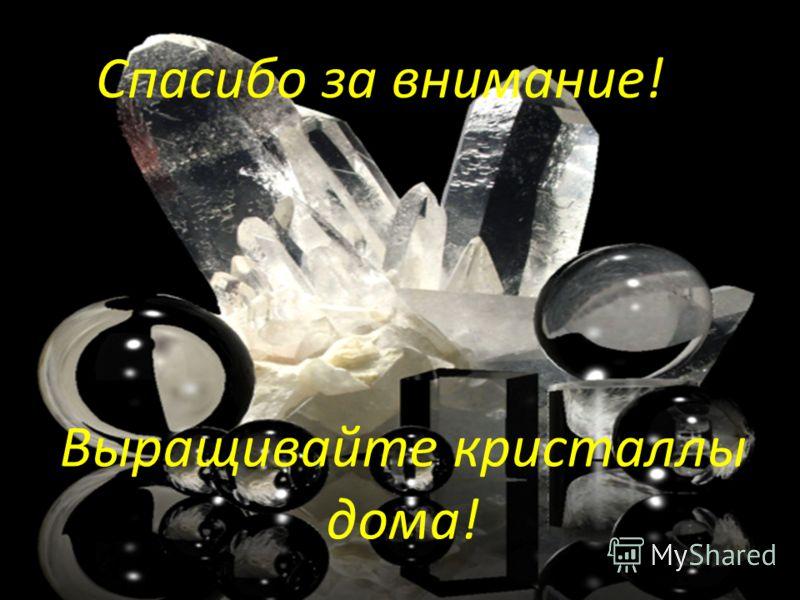 Выращивайте кристаллы дома! Спасибо за внимание!