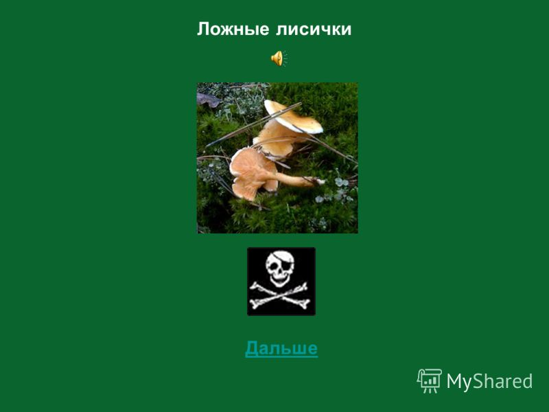 6 Определи съедобный этот гриб или несъедобный?