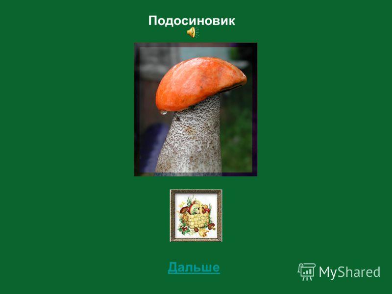 8 Определи съедобный этот гриб или несъедобный?