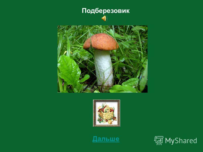 9 Определи съедобный этот гриб или несъедобный?