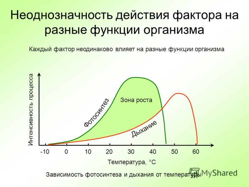 Неоднозначность действия фактора на разные функции организма Температура, °C Интенсивность процесса Ф о т о с и н т е з Д ы х а н и е -100102030405060 Зона роста Зависимость фотосинтеза и дыхания от температуры Каждый фактор неодинаково влияет на раз