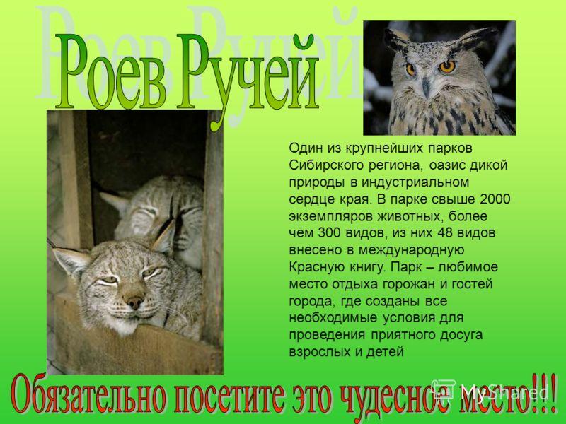 Один из крупнейших парков Сибирского региона, оазис дикой природы в индустриальном сердце края. В парке свыше 2000 экземпляров животных, более чем 300 видов, из них 48 видов внесено в международную Красную книгу. Парк – любимое место отдыха горожан и