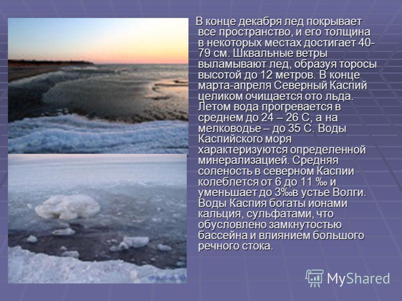 В конце декабря лед покрывает все пространство, и его толщина в некоторых местах достигает 40- 79 см. Шквальные ветры выламывают лед, образуя торосы высотой до 12 метров. В конце марта-апреля Северный Каспий целиком очищается ото льда. Летом вода про