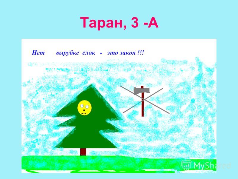 Таран, 3 -А