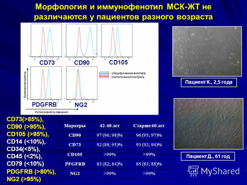 Морфология и иммунофенотип МСК-ЖТ не различаются у пациентов разного возраста CD73(>85%), CD90 (>95%), CD105 (>95%), CD14 ( 85%), CD90 (>95%), CD105 (>95%), CD14 (99% CD73CD90 CD105 PDGFRB NG2 Пациент К., 2,5 года Пациент Д., 61 год