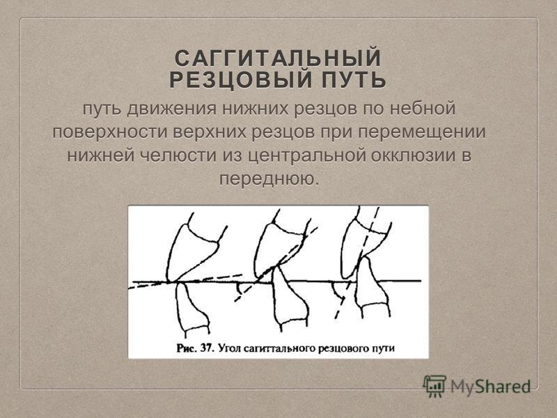 САГГИТАЛЬНЫЙ РЕЗЦОВЫЙ ПУТЬ путь движения нижних резцов по небной поверхности верхних резцов при перемещении нижней челюсти из центральной окклюзии в переднюю.