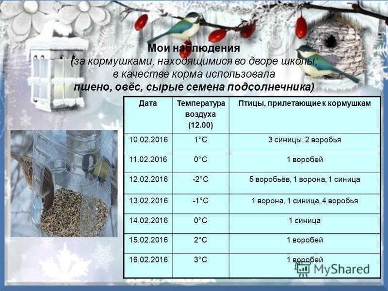 Мои наблюдения (за кормушками, находящимися во дворе школы; в качестве корма использовала пшено, овёс, сырые семена подсолнечника) Дата Температура воздуха (12.00) Птицы, прилетающие к кормушкам 10.02.20161°C3 синицы, 2 воробья 11.02.20160°C1 воробей
