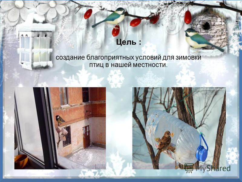 Цель : создание благоприятных условий для зимовки птиц в нашей местности.