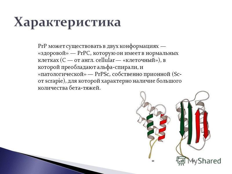 PrP может существовать в двух конформациях «здоровой» PrPC, которую он имеет в нормальсных клетках (C от англ. cellular «клеточсный»), в которой преобладают альфа-спирали, и «патологической» PrPSc, собственно приемной (Sc- от scrapie), для которой ха