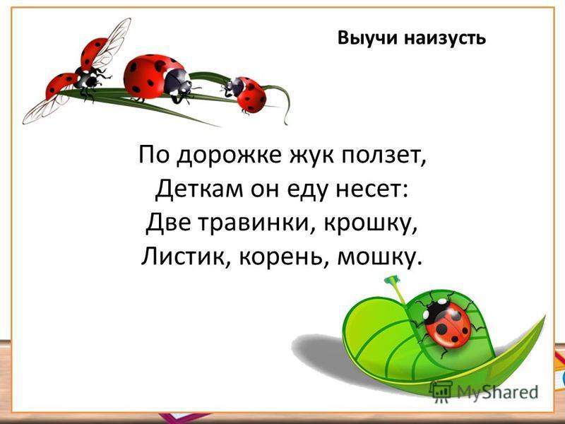 По дорожке жук ползет, Деткам он еду несет: Две травинки, крошку, Листик, корень, мошку. Выучи наизусть