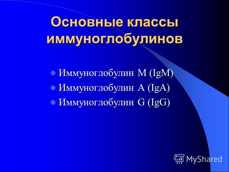 Основные классы иммуноглобулинов Иммуноглобулин М (IgM) Иммуноглобулин А (IgА) Иммуноглобулин G (IgG)
