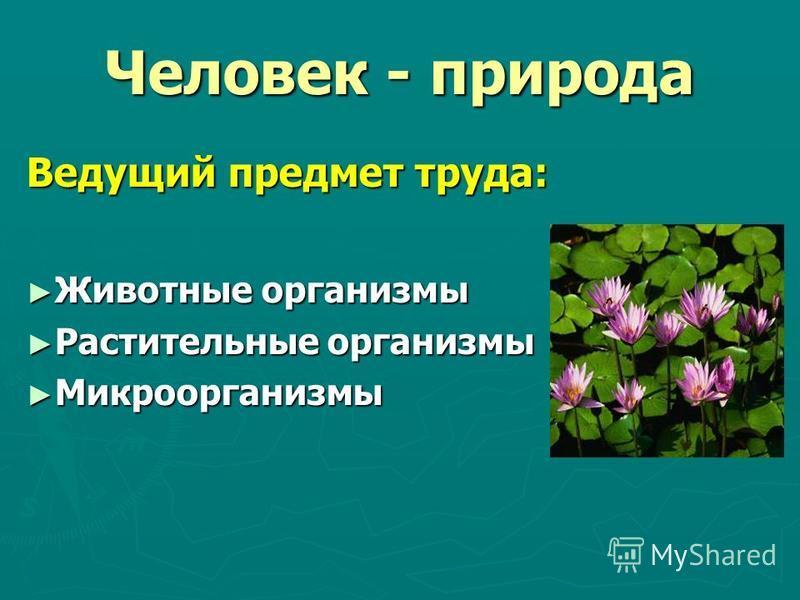 Человек - природа Ведущий предмет труда: Животные организмы Животные организмы Растительные организмы Растительные организмы Микроорганизмы Микроорганизмы