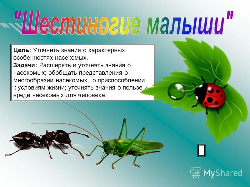 Цель: Уточнить знания о характерных особенностях насекомых. Задачи: Расширять и уточнять знания о насекомых; обобщать представления о многообразии насекомых, о приспособлении к условиям жизни; уточнять знания о пользе и вреде насекомых для человека;