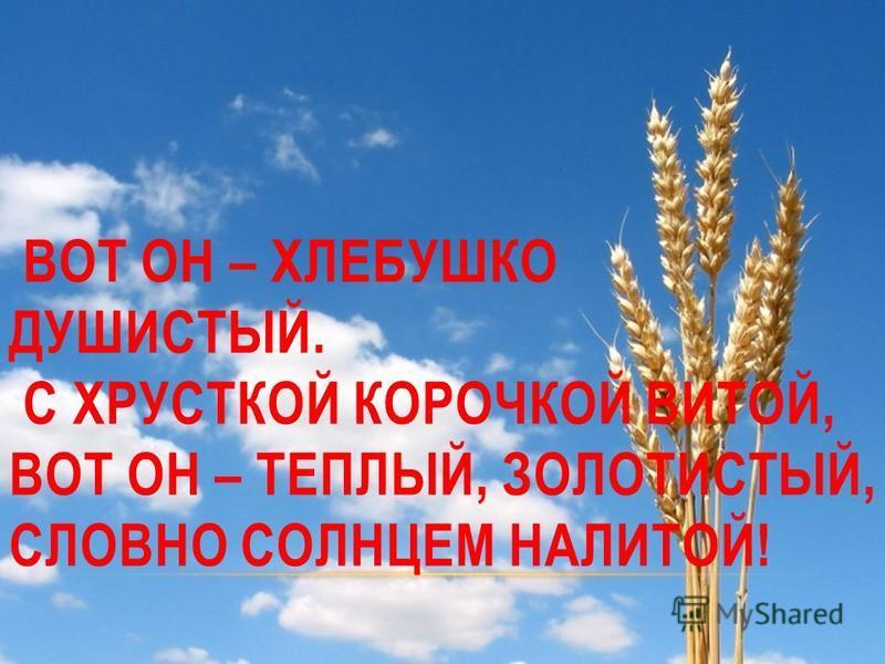 ВОТ ОН – ХЛЕБУШКО ДУШИСТЫЙ. С ХРУСТКОЙ КОРОЧКОЙ ВИТОЙ, ВОТ ОН – ТЕПЛЫЙ, ЗОЛОТИСТЫЙ, СЛОВНО СОЛНЦЕМ НАЛИТОЙ!