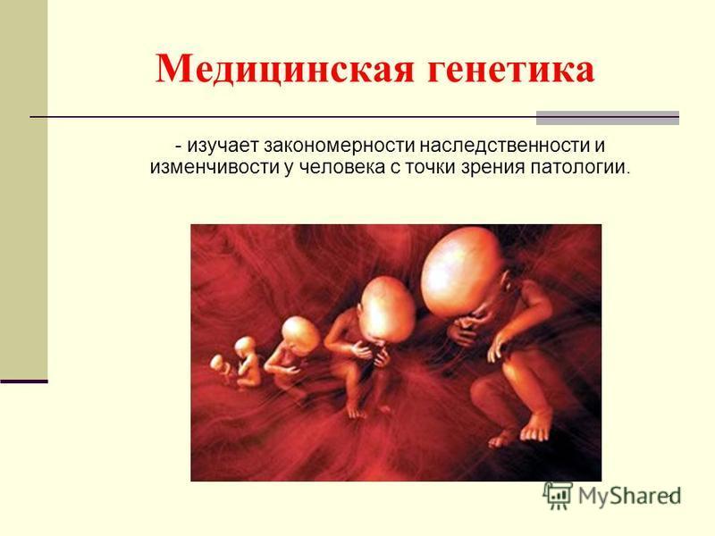 Медицинская генетика - изучает закономерности наследственности и изменчивости у человека с точки зрения патологии. 1