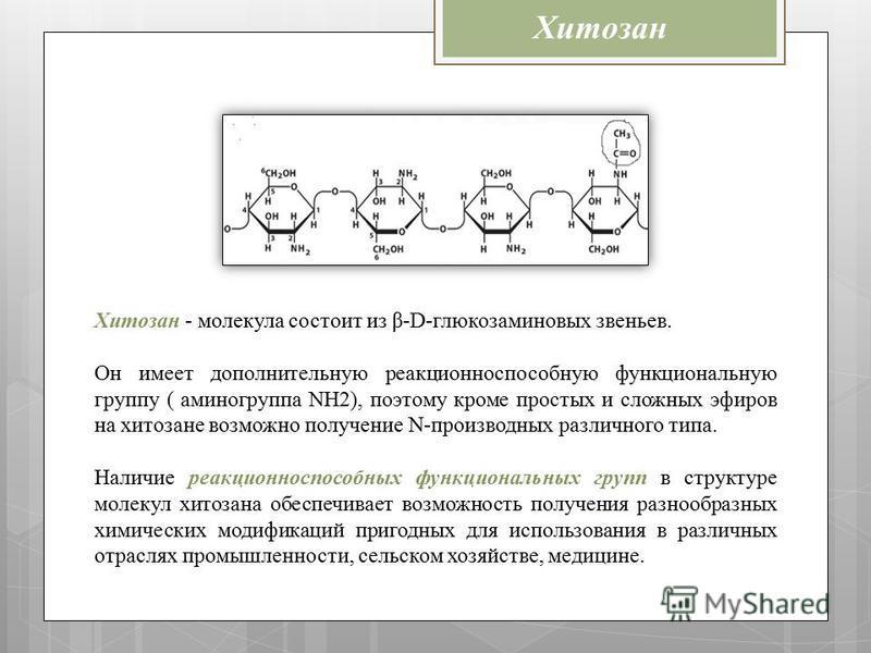 Хитозан Хитозан - молекула состоит из β-D-глюкозаминовых звеньев. Он имеет дополнительную реакционно способную функциональную группу ( аминогруппа NH2), поэтому кроме простых и сложных эфиров на хитозане возможно получение N-производных различного ти