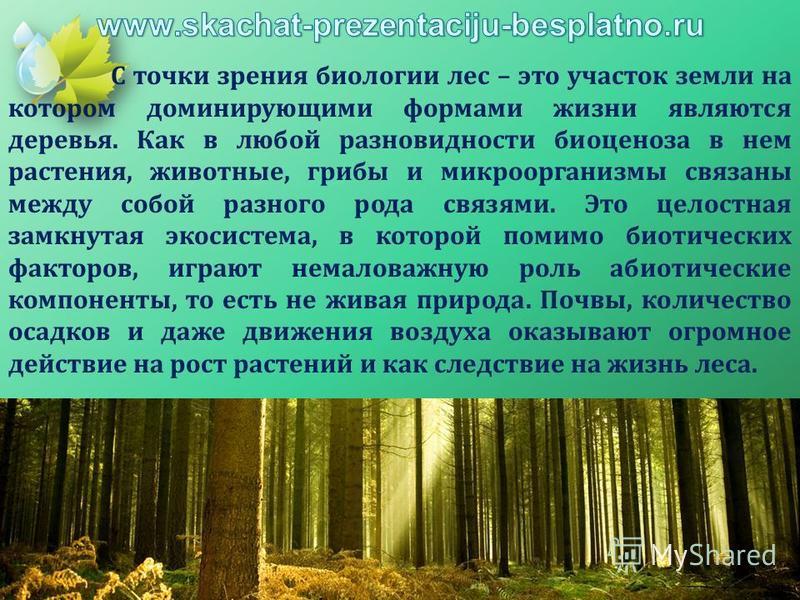 С точки зрения биологии лес – это участок земли на котором доминирующими формами жизни являются деревья. Как в любой разновидности биоценоза в нем растения, животные, грибы и микроорганизмы связаны между собой разного рода связями. Это целостная замк