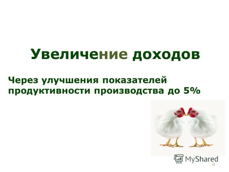 31 Увеличение доходов Через улучшения показателей продуктивности производства до 5%