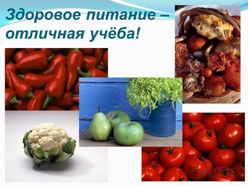 Здоровое питание – отличная учёба!