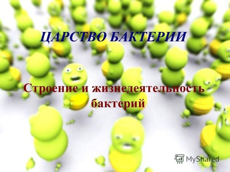 ЦАРСТВО БАКТЕРИИ Строение и жизнедеятельность бактерий