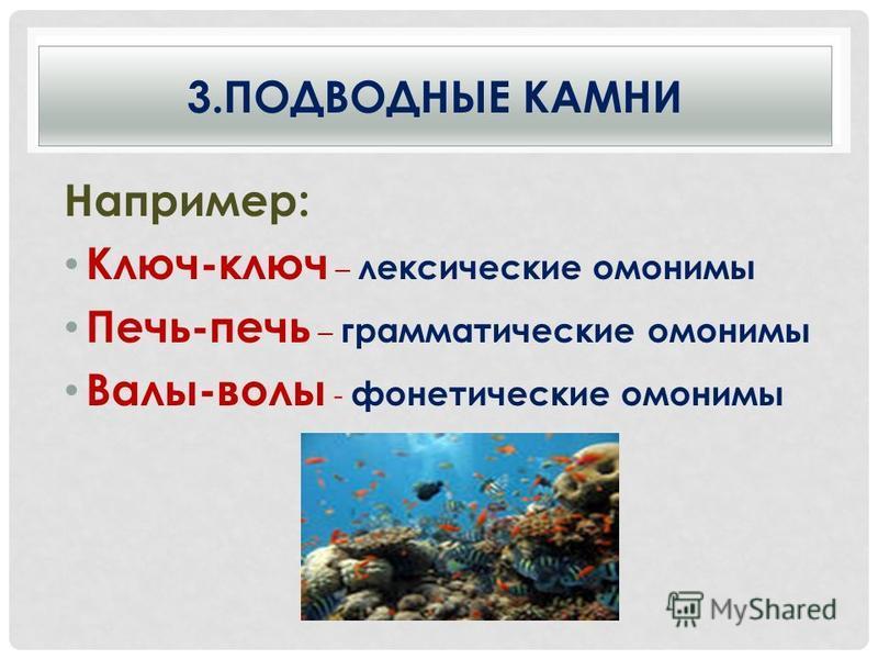 3. ПОДВОДНЫЕ КАМНИ Например: Ключ-ключ – лексические омонимы Печь-печь – грамматические омонимы Валы-волы - фонетические омонимы