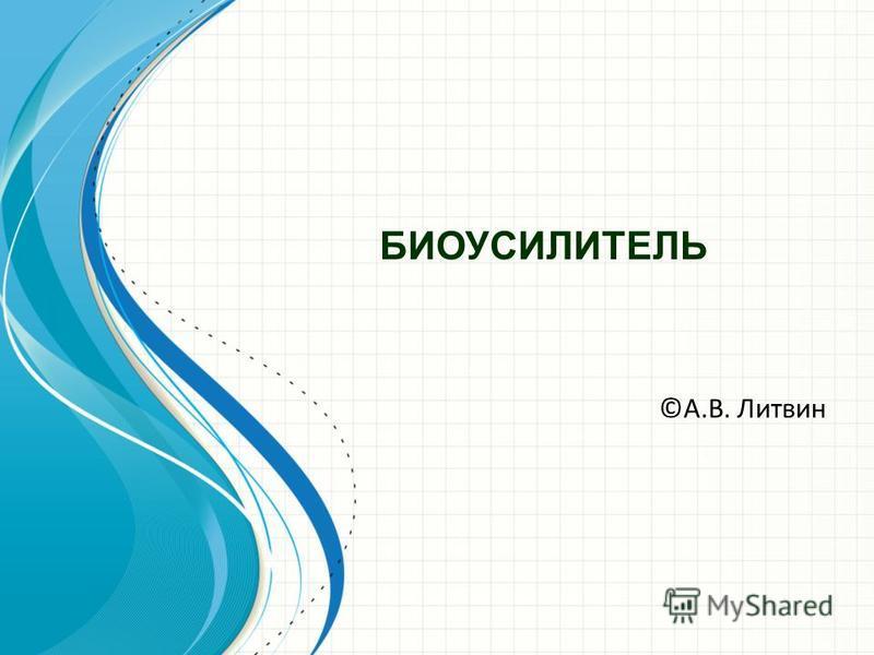 БИОУСИЛИТЕЛЬ ©А.В. Литвин