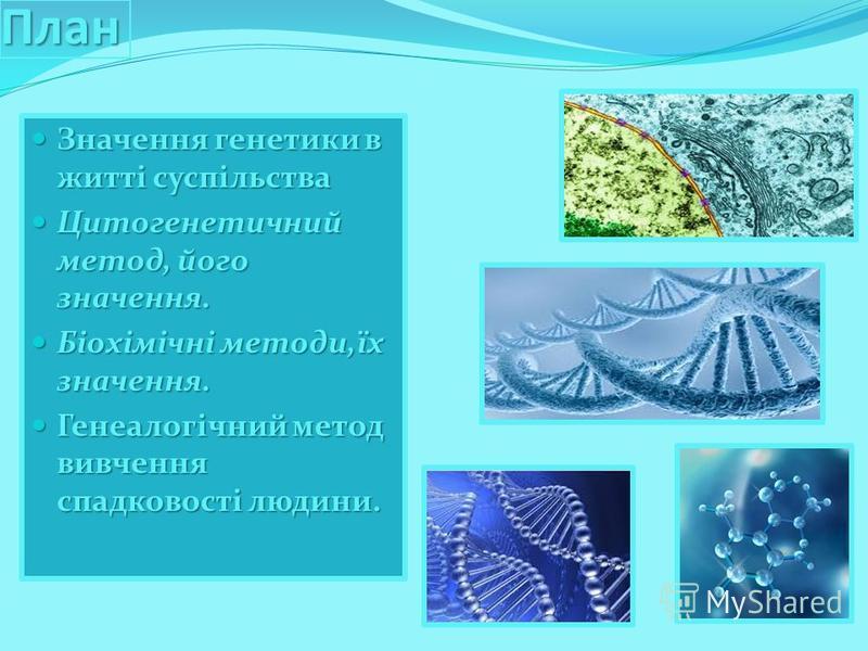 План Значення генетики в житті суспільства Значення генетики в житті суспільства Цитогенетичний метод, його значення. Цитогенетичний метод, його значення. Біохімічні методи,їх значення. Біохімічні методи,їх значення. Генеалогічний метод вивчення спад