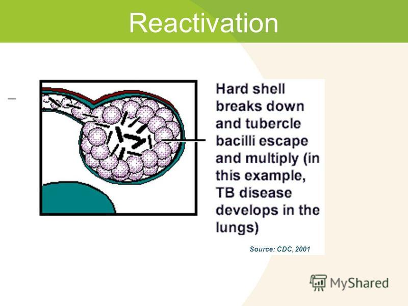 Reactivation Source: CDC, 2001