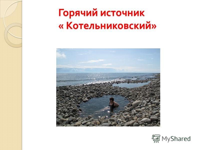 Горячий источник « Котельниковский »