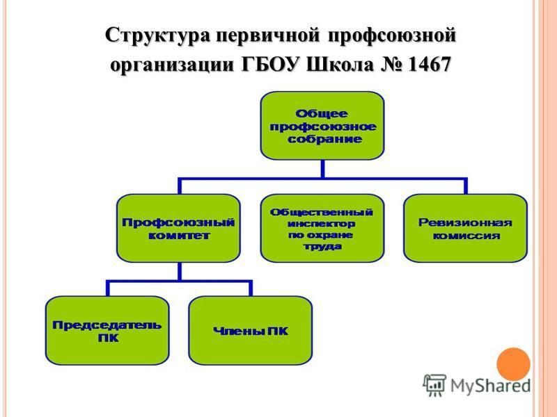 Структура первичной профсоюзной организации ГБОУ Школа 1467