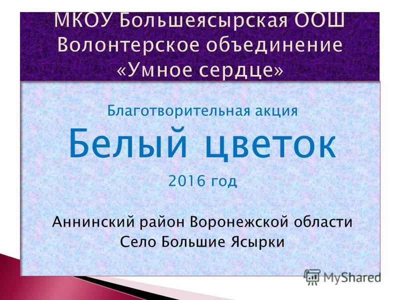 Благотворительная акция Белый цветок 2016 год Аннинский район Воронежской области Село Большие Ясырки
