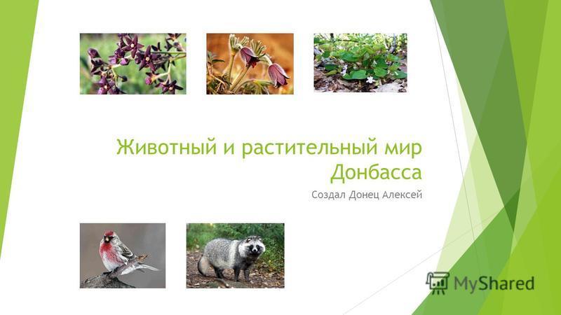 Животный и растительный мир Донбасса Создал Донец Алексей