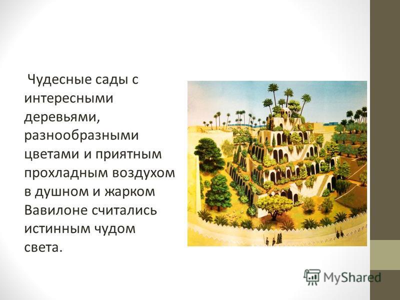 Чудесные сады с интересными деревьями, разнообразными цветами и приятным прохладным воздухом в душном и жарком Вавилоне считались истинным чудом света.