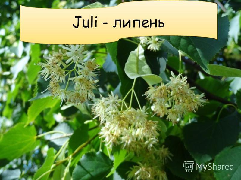Juli - липень