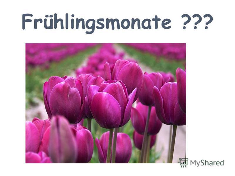 Frühlingsmonate ???