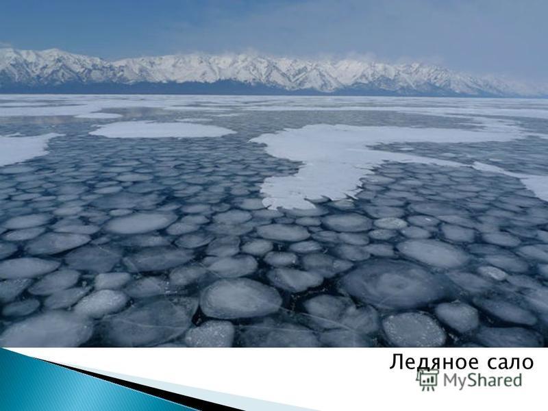 Ледяное сало