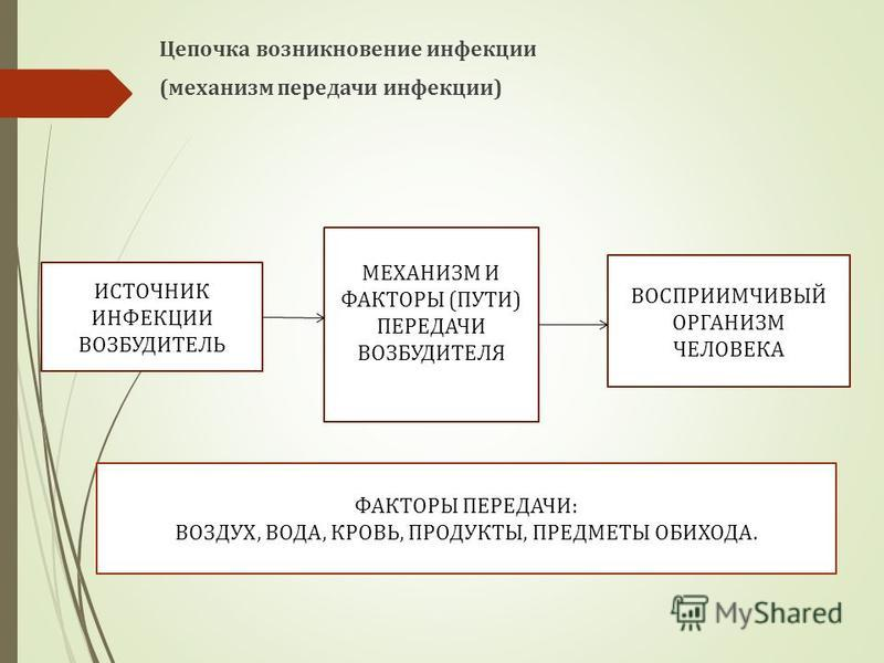 Цепочка возникновение инфекции (механизм передачи инфекции) МЕХАНИЗМ И ФАКТОРЫ (ПУТИ) ПЕРЕДАЧИ ВОЗБУДИТЕЛЯ ВОСПРИИМЧИВЫЙ ОРГАНИЗМ ЧЕЛОВЕКА ФАКТОРЫ ПЕРЕДАЧИ: ВОЗДУХ, ВОДА, КРОВЬ, ПРОДУКТЫ, ПРЕДМЕТЫ ОБИХОДА. ИСТОЧНИК ИНФЕКЦИИ (ВОЗБУДИТЕЛЬ)