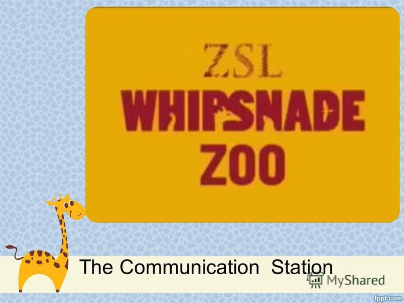 The Communication Station
