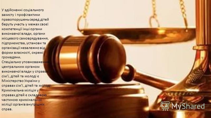 У здійсненні соціального захисту і профілактики правопорушень серед дітей беруть участь у межах своєї компетенції інші органи виконавчої влади, органи місцевого самоврядування, підприємства, установи та організації незалежно від форми власності, окре