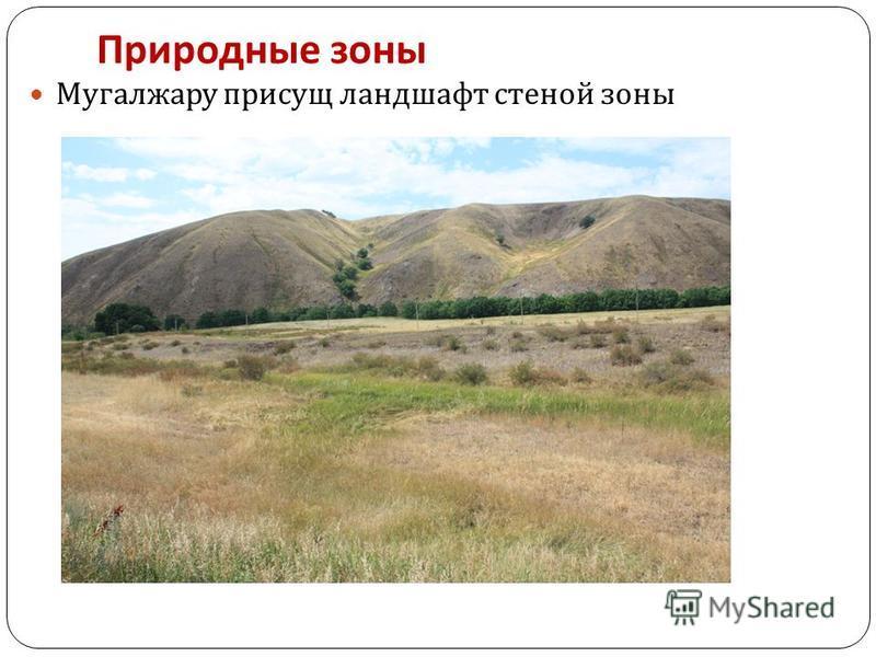 Природные зоны Мугалжару присущ ландшафт стеной зоны