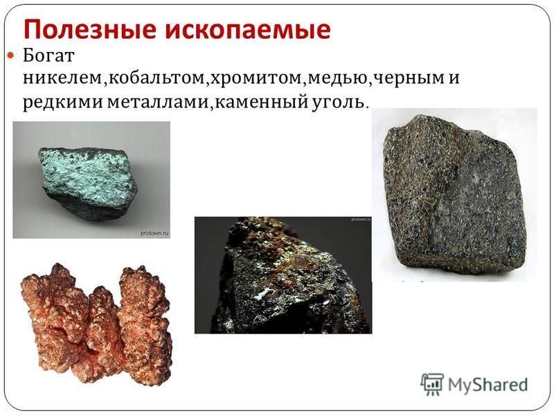 Полезные ископаемые Богат никелем, кобальтом, хромитом, медью, черным и редкими металлами, каменный уголь.
