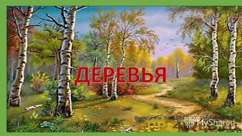 Воспитатели: Баранова Д. Ю., Шишканова А. А.