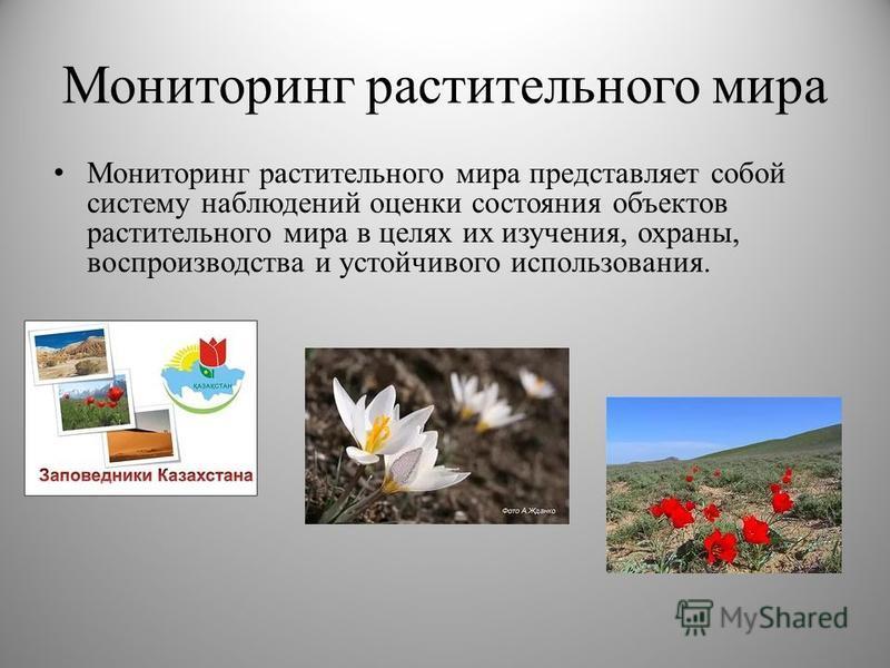 Мониторинг растительного мира Мониторинг растительного мира представляет собой систему наблюдений оценки состояния объектов растительного мира в целях их изучения, охраны, воспроизводства и устойчивого использования.
