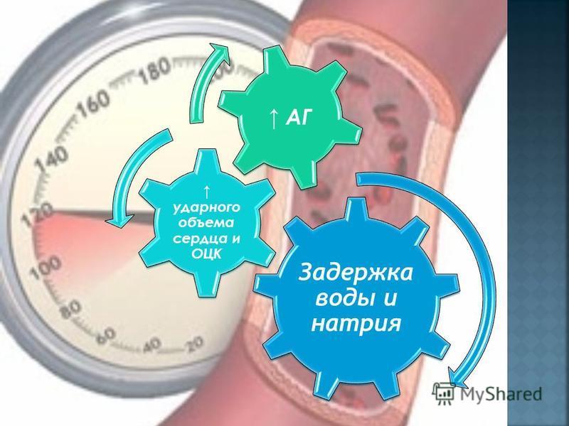 Задержка воды и натприя ударного объема сердца и ОЦК АГ